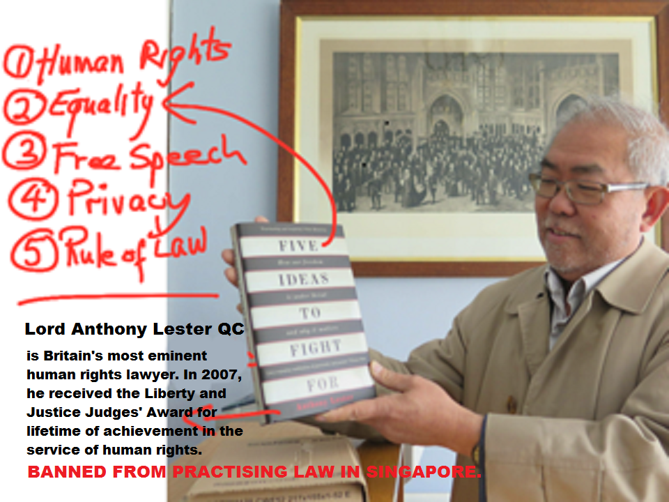 Snippets from Lord Anthony Lester book 'Five Ideas...