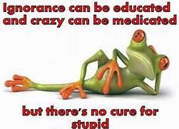 Stupidity has no cure