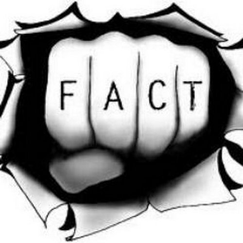 What is an 'opinion', and what is a 'fact'?