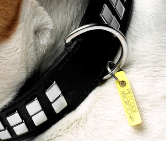 High-Technology Dog Tags For More Than Just Dogs
